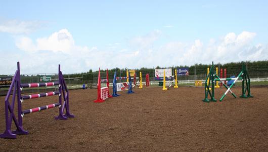 Showjumping and Cross Country Training