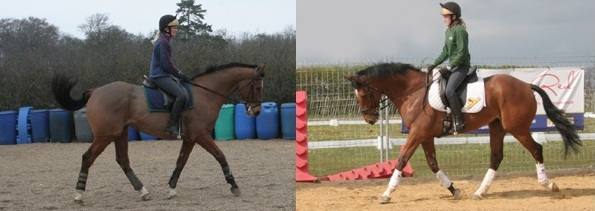 2 images comparing a horse's way of going